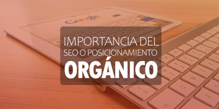 Importancia del SEO o posicionamiento orgánico en buscadores